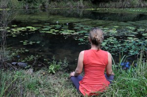 Ten natural remedies to Suffering: A Guide to optimal wellbeing.