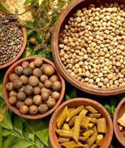 Ayurveda:  Food as Medicine