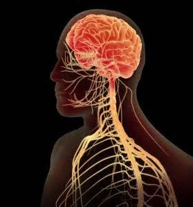 Tone Your Nervous System