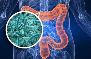 What is Microbiome? & is my Skin's Microbiome related to my Gut Microbiome?